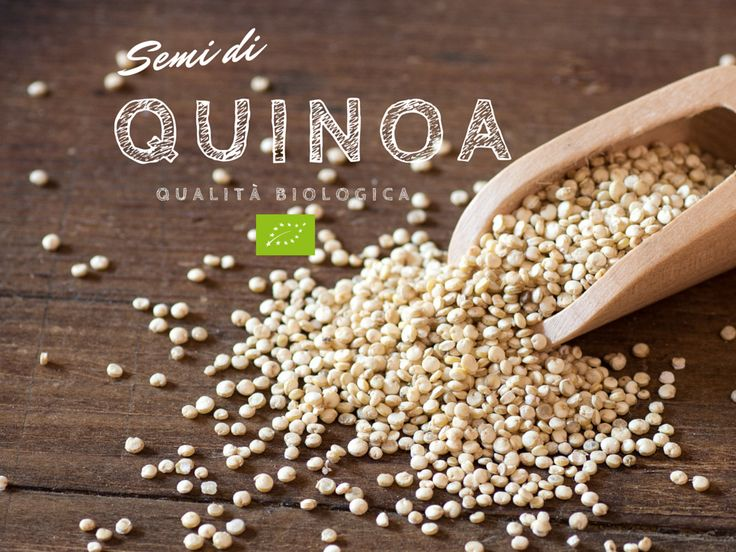 Quinoa | www.bacchedigoji.it