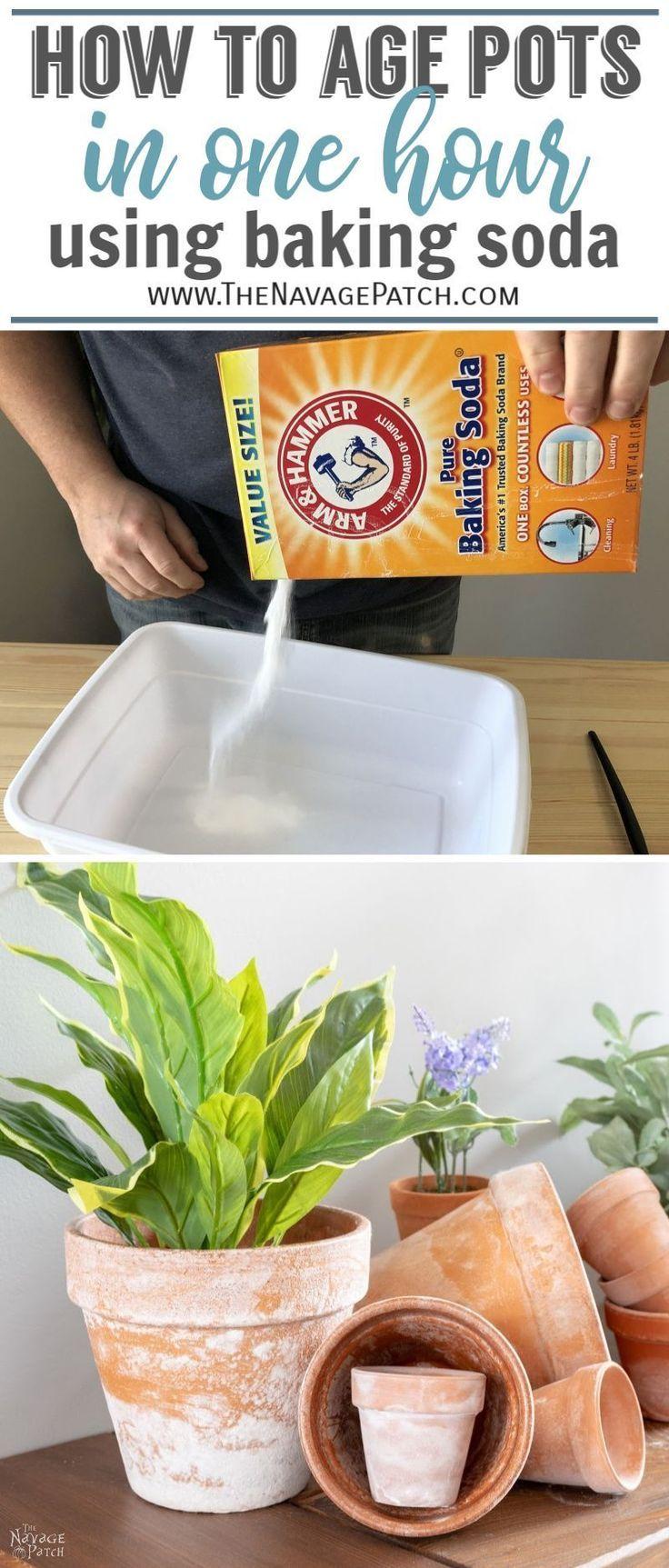 Diy Faux Aged Mossy Terracotta Pots Plants Garden Pots Terracotta Pots