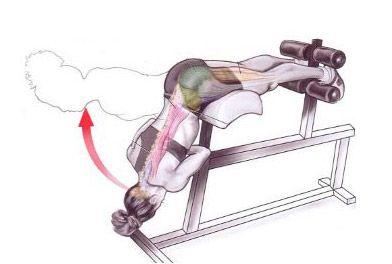 Fortaleça a lombar com o Exercício Extensão Lombar