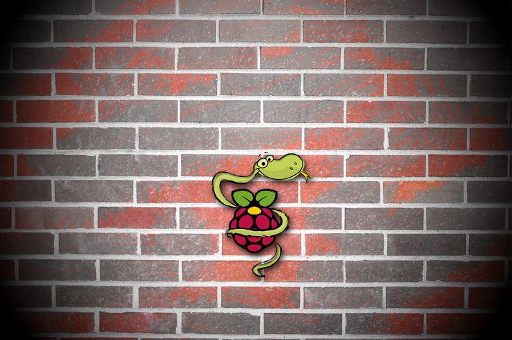 Python per Raspberry | Il libro