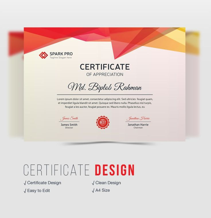 Best 25+ Certificate design ideas on Pinterest Certificate - creative certificate designs