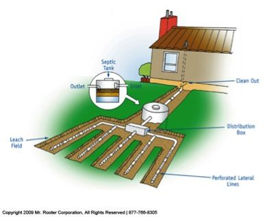 Septic pumping companies have some cool diagrams. This graphic shows what everything looks like underground with a septic system. You get the idea of how it is distributed into the ground after bacteria break it down in the tank.