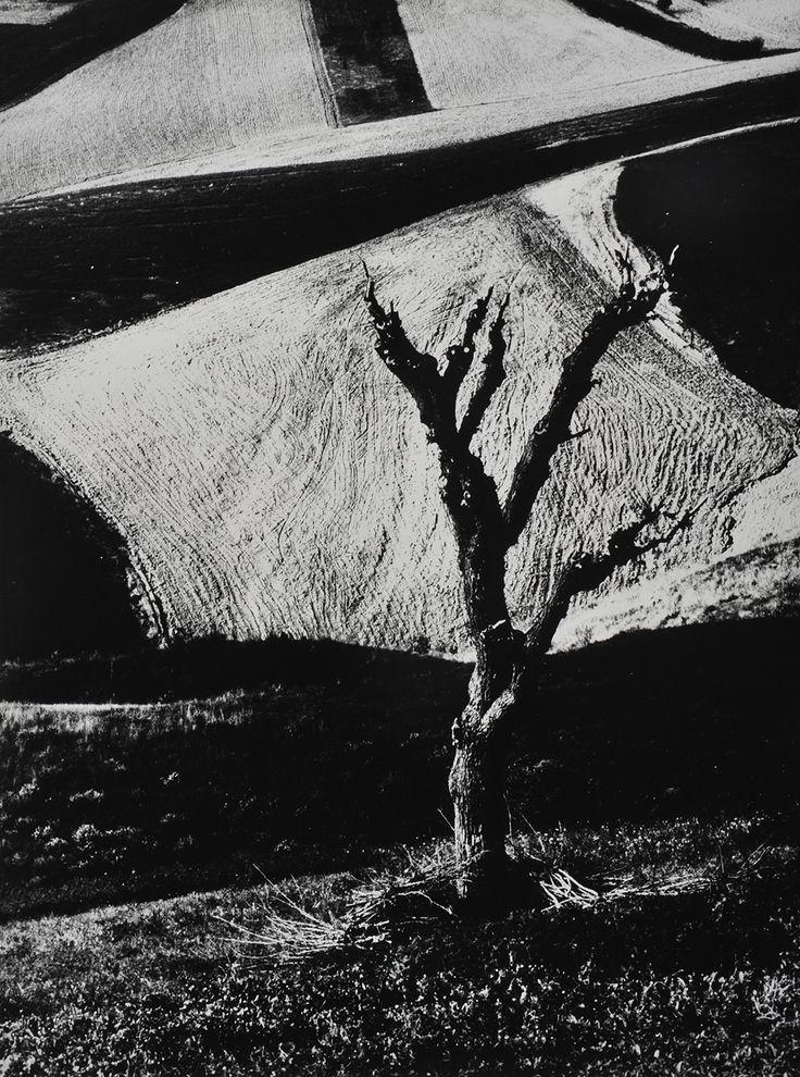 Mario Giacomelli, 1966