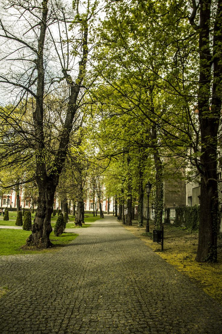[fot. Borys] https://www.facebook.com/Poznan/photos/a.392564567892.167471.376101312892/10152358657247893/?type=1