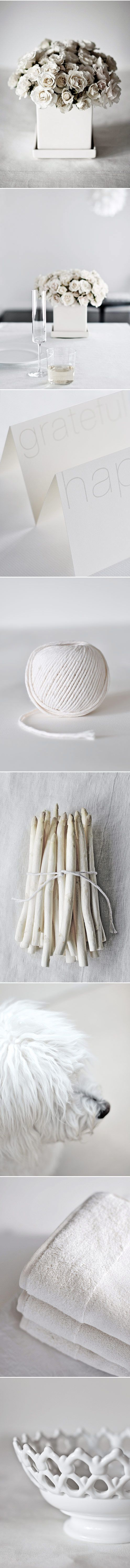 You may not want to rent a white dog for your wedding, but I love the all white inspiration found here.