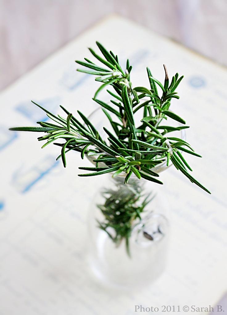 Rosemary...