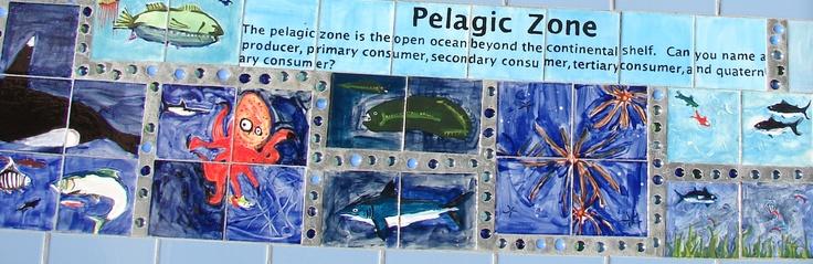 Matthys Elementary in Pasadena ISD.  Pelagic Zone. Ocean Zone Bench Tops. Artist Boat Eco-Art Residency Program.