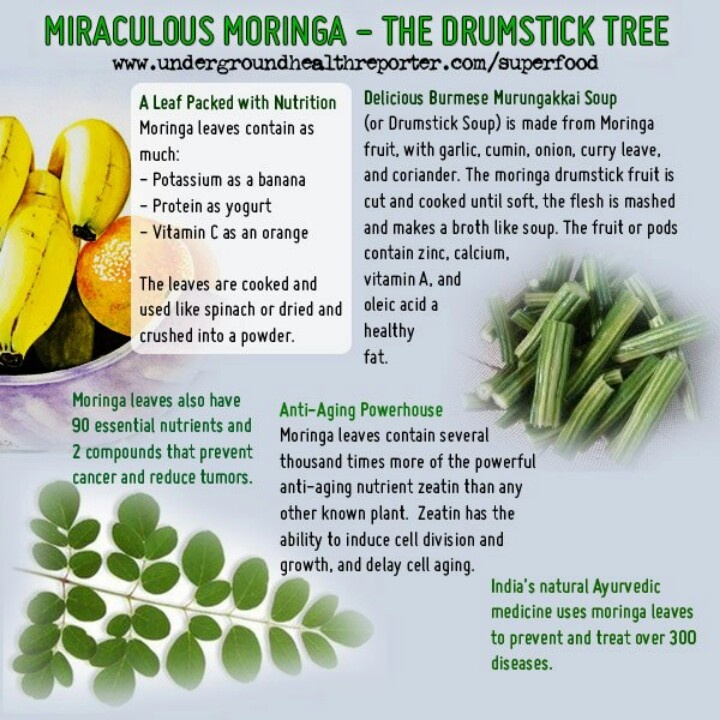 17 Best images about Moringa Nutrition on Pinterest