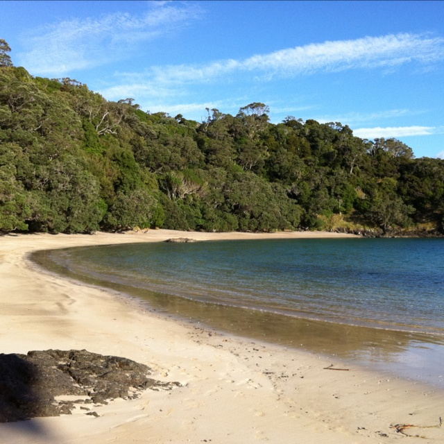 Whale Bay - Tutukaka Coast - on a winter's afternoon