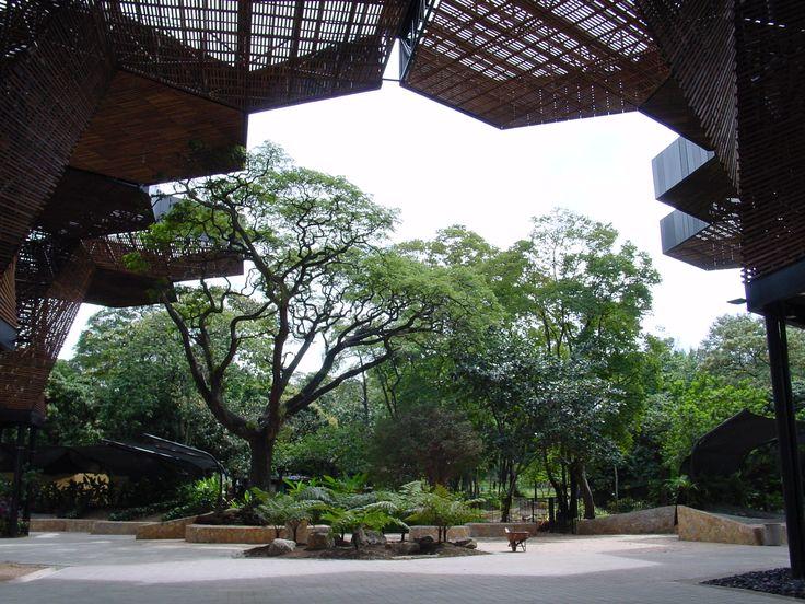 Jardín botánico, Medellín.
