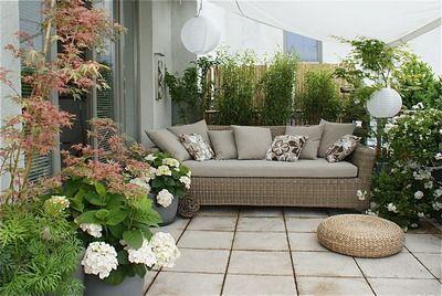 Dachterrasse unter`m Sonnensegel, Pflanzen als Sichtschutz