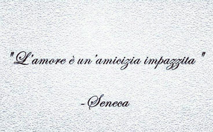 Seneca Citazioni Verità Amare