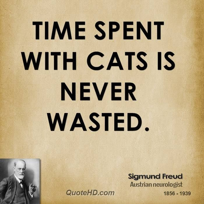 Sigmund Freud Time Quotes | QuoteHD