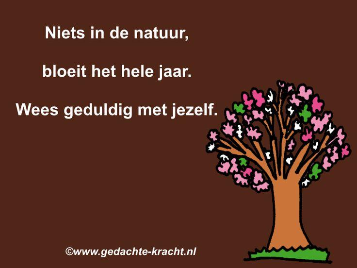 Niets in de natuur, bloeit het hele jaar. Wees geduldig met jezelf.