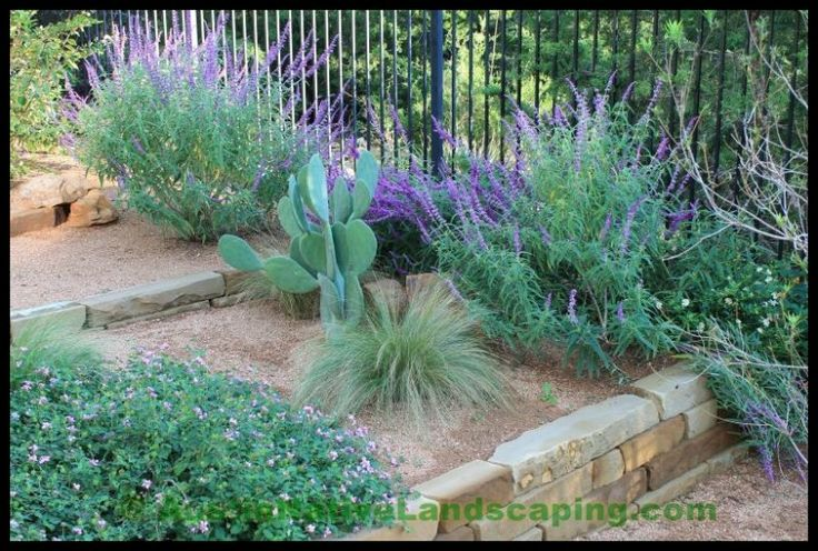 Texas Hill Country Xeriscaping Xeriscape Design Drought