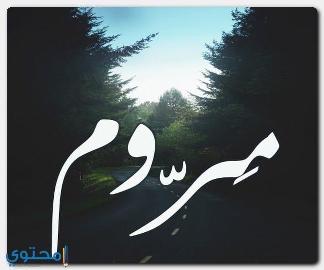 معنى اسم مروم وحكم التسمية Marum معاني الاسماء Marum اسم مروم Nike Logo Art