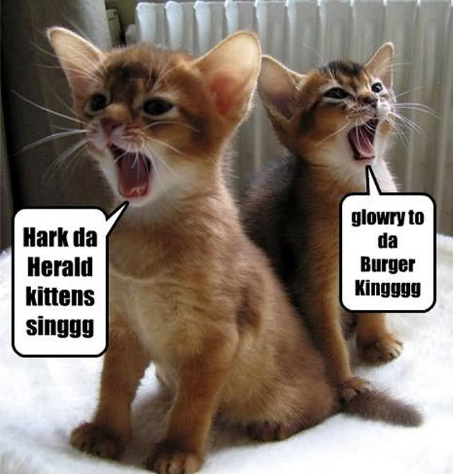 72 best Funny,cute animals images on Pinterest | Animals, Funny ...