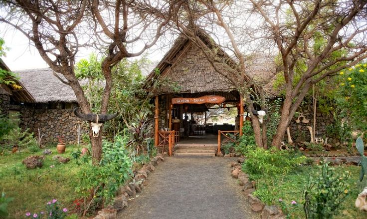 Foyer Wallpaper Kenya : Best luxury safari lodges images on pinterest