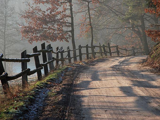Droga w okolicach Zbiczna