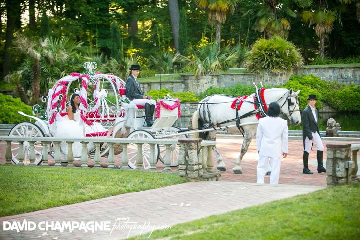 13 Best Images About Leu Gardens Weddings On Pinterest: Norfolk Botanical Garden Wedding Ceremony With Horse And