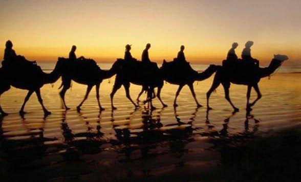 Rumah Allah Travel: Pembentukan Madzhab Fiqih Masa Abbasiyah