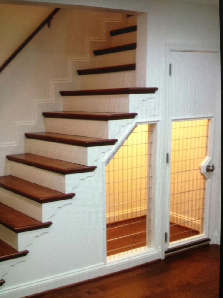 Under stairs dog house has built this room for a dog for Room design under stairs