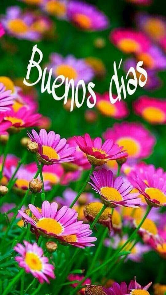 Good Morning Blessings In Spanish : Best spanish good morning ideas on pinterest
