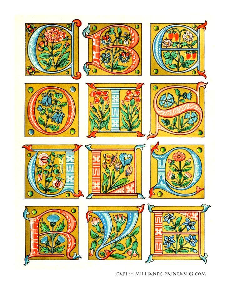 monk's manuscript writing styles | ... Illuminated Manuscript Letters, Lettering Styles Alphabet Inspiration