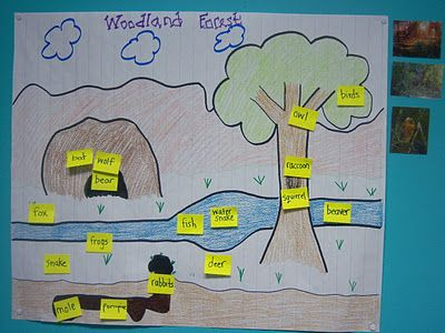Habitats--Can work for any habitat :) Give each child an animal to place on the poster in the correct part of the forest