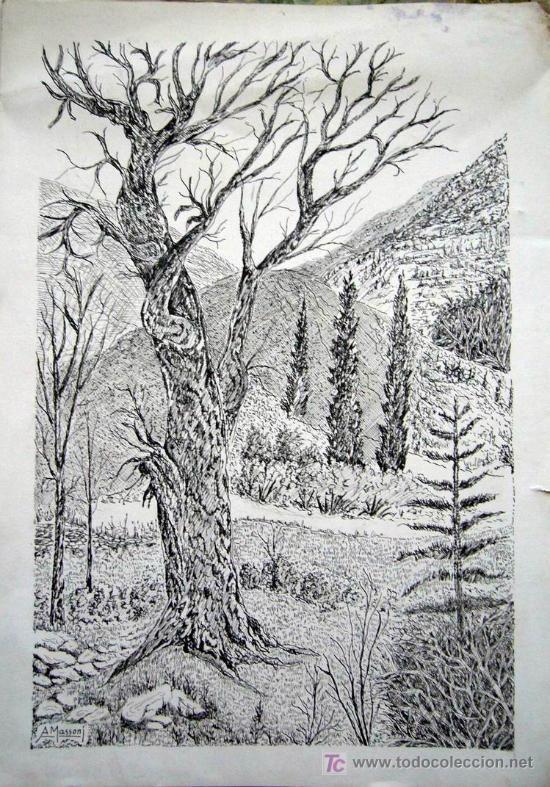 1326 dibujo tinta s papel 41x29 paisaje bosque a massoni arte dibujos - Laminas de dibujo artistico ...