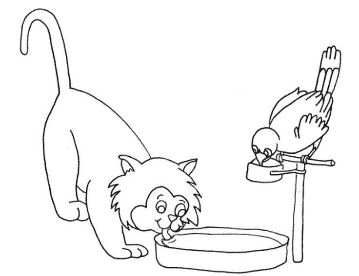lion drinking water coloring pages   I have download Cute Cat And Bird Were Drinking Water ...