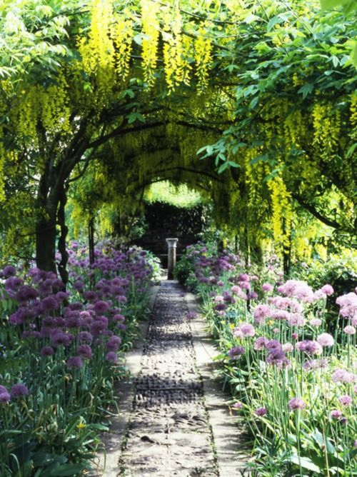 Pretty garden :): Secret Gardens, Garden Ideas, Secret Garden, Garden Paths, Outdoor, Place, Flower
