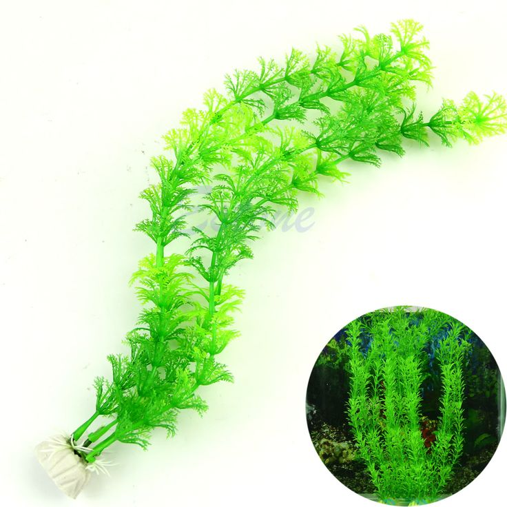 "13"" Stunning Green Artificial Grass Plastic Fish Tank Water Plant Aquarium Decor #Affiliate"