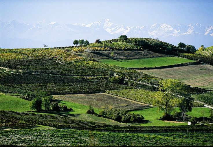 Discover what to see in Piedmont. #piedmont #travel #italy