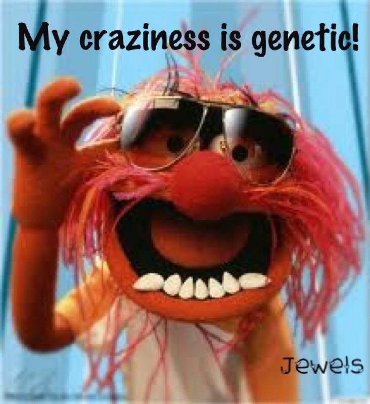 60 Best Muppet Fan Images On Pinterest: 60 Best Images About Jim Henson! On Pinterest