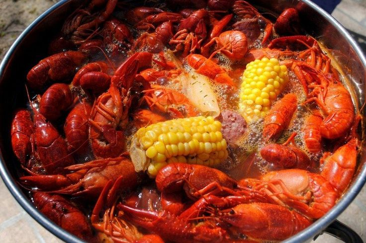 Little New Orleans Kitchen & Oyster Bar Restaurants in Orlando: Read reviews written by 10Best experts and explore user ratings. What it lacks in glamor and ambiance it more than makes up for in friendly, neighborhood feel and down-home cookin'. Po' boys and crawfish, jambalaya and gumbo, fresh-shucked oysters and a roster of deep-fried faves, including beignets, keep the locals coming back.