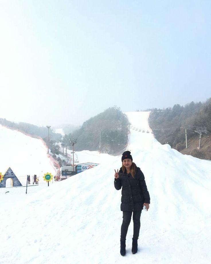Tours in korea/Tours in seoul, Seoul city tour/seoul tour,  Ski in korea/korea ski tour, Ski resort/elysian ski resort, Nami island tour/nami island Dmz tours/NLL tours <Www.sunburstkorea.com> <Www.visitinkorea.com> #koreadmztour#skitourinseoul#namiislandtour#namiisland#dmztourInseoul#toursinseoul#philippines#koreaskitour#seoulcitytour#toursinkorea#koreatrip#myeongdong#dongdaemun#muslim#seoultour#tourism#tourist#naminara#visitkorea#visitinkorea#koreatour#indonesia#thialand#koreadrama#hongdae