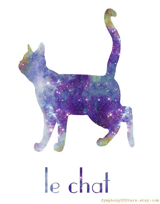 Cat II Galaxy Universe Fine Art Print Poster: 15.00 With or without text. Exploring the universe will be far less scary if there are cats :-)