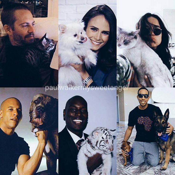 The F&F cast with adorable petsswipe to see more ——— #paulwalker #vindiesel #tyrese #michellerodriguez #jordanabrewster #ludacris #galgadot #nathalieemmanuel #jasonstatham #dwaynejohnson #fastfam #fastfamily #familyforever #pet #animal #animallovers #ripangelwalker #angelwalker #fastandfurious #rippaulwalker #foreverinourhearts #rememberthebuster #seeyouagain #teampw #teampwforever #lovingpaulwalker