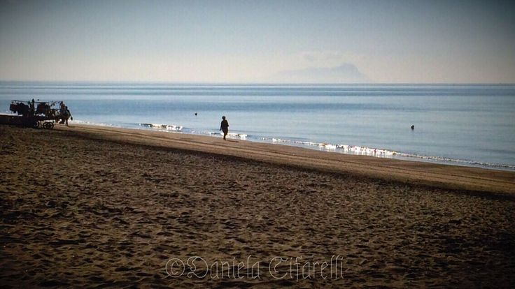 Belong Anywhere Fading Summer - just love walking on the shore in the morning... Morning Rituals | EyeEm