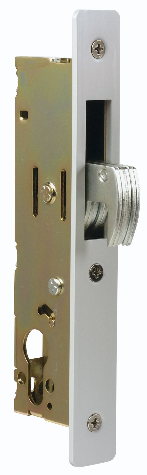Europrofile deadlocks provide security deadlocking for a variety of aluminium doors including swinging and sliding applications