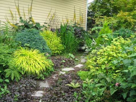 63 best images about shade gardens on pinterest gardens for Part shade garden designs