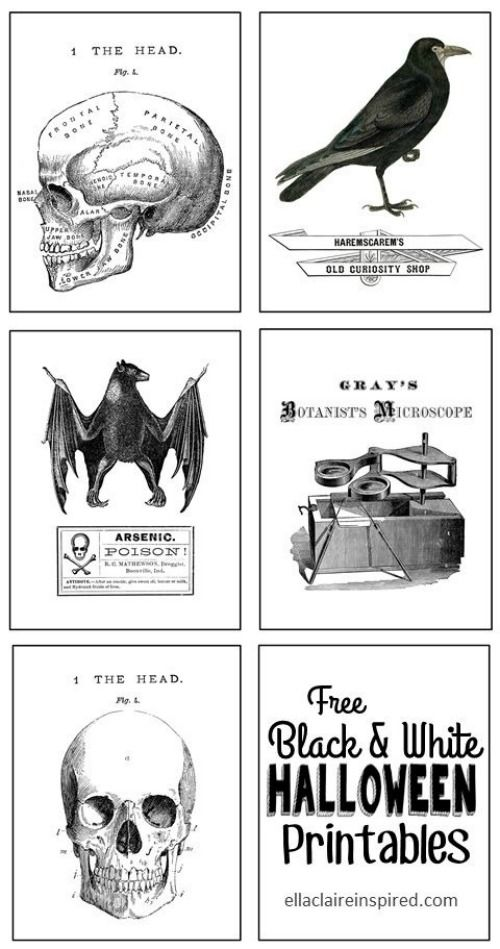Black and White Halloween Printables from Ella Claire Inspired. Also 31 FREE Halloween Printables on Frugal Coupon Living. Halloween freebies for kids, adults and the home.