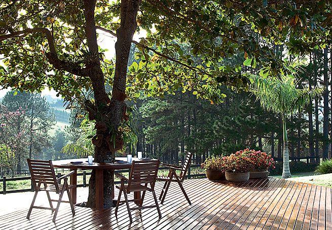 No jardim projetado pela paisagista Juliana Freitas, com a arquiteta Andrea Velletri, o chapéu-de-sol reina absoluto e passou a ser o ponto de encontro dos proprietários, que aproveitam a mesa de ipê instalada em volta da árvore para curtir o nascer do sol tomando seu café da manhã