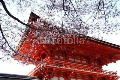 mata magnetyczna Świątynia japonais i cerisier fleuri wyborem Kioto