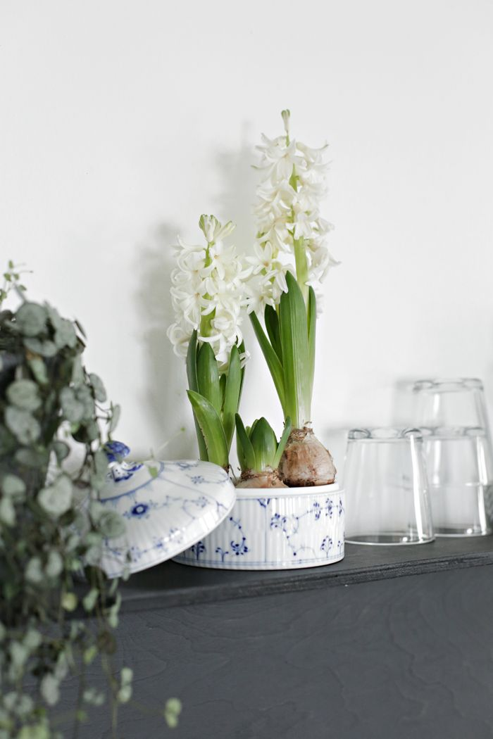 weekly wrap-up, scandinavian design news, stylizimo, royal copenhagen via http://www.scandinavianlovesong.com/