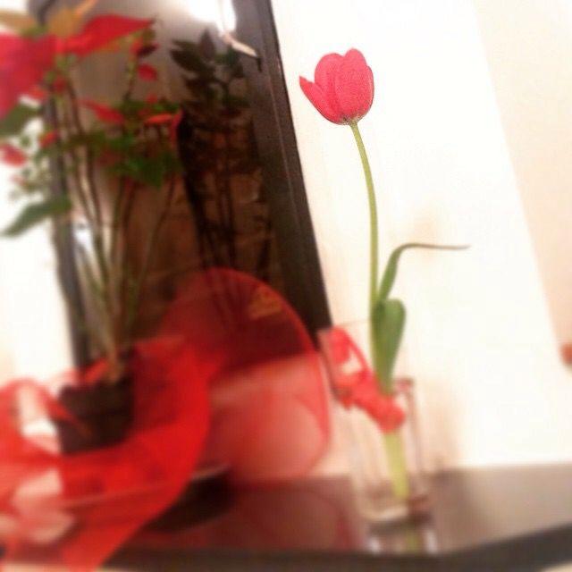 One flower, one million feelings  Make me feel...LOVE Emotions