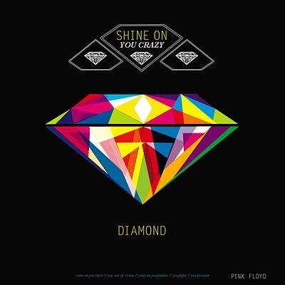 "Pink Floyd - ""shine on you crazy diamond"""