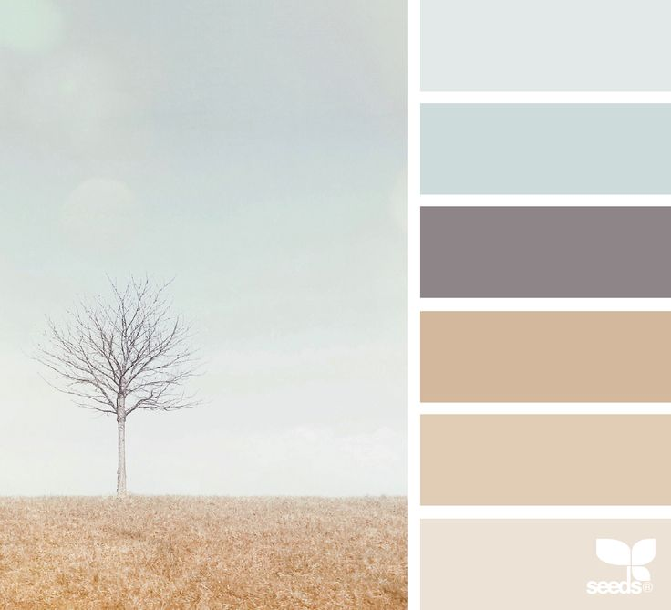 7260 Best Images About Color Palettes On Pinterest Color