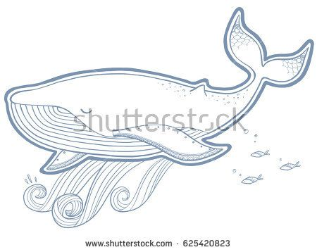Whale vector illustration. Hand-drawing.